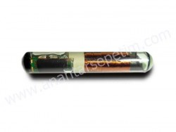 Texas - ID4C Glass